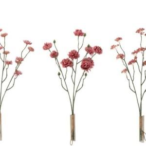 Fleur Bouquet Chrysanthème