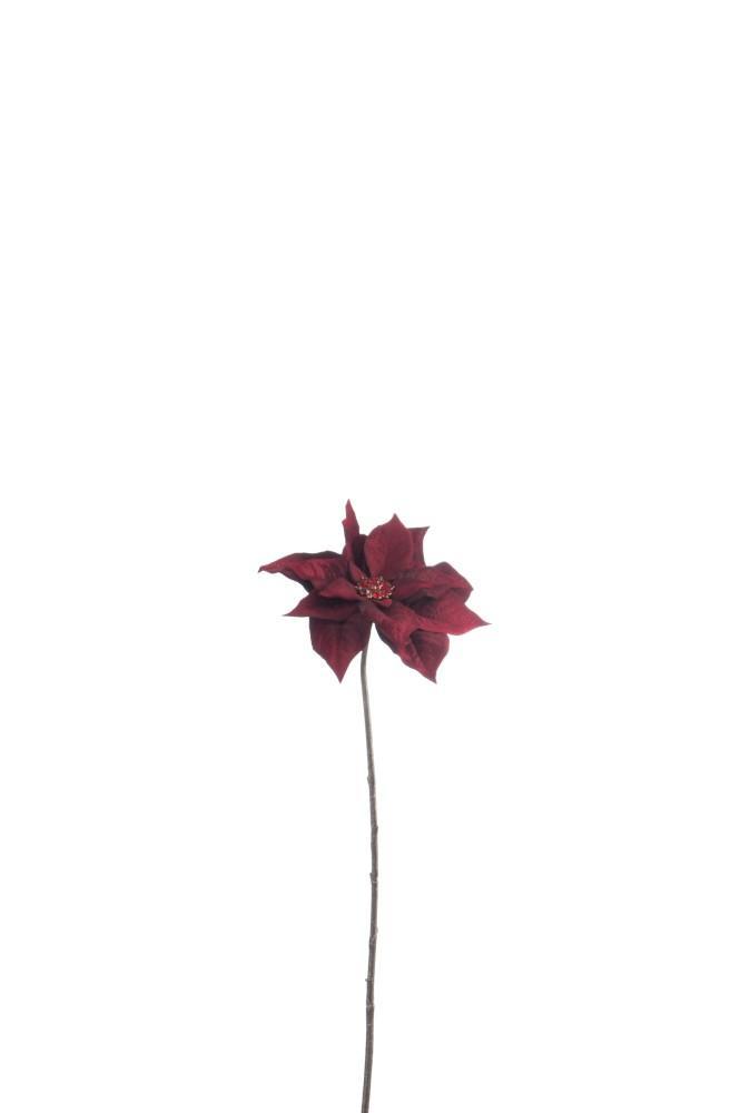 Fleur de Noël rouge