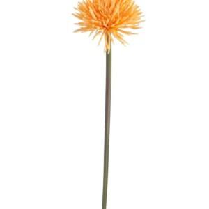 Fleur Daisy Orange