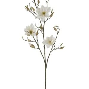 Fleur Magnolia creme