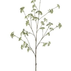Fleur Patrinia mat vert