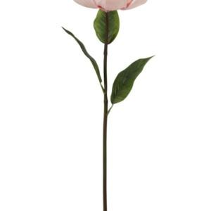 Fleur DE KAPOK Rose