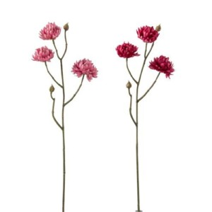 Fleur CHRYSANTHÈME ROSE F